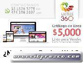 Diseño Páginas Web en León Gto