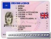 Compre licencia de conducir Visa, pasaporte, tarjeta de identificación, certificado de nacimiento, T