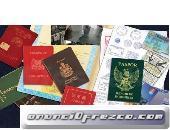 Billetes de banco, Visa, Permiso de conducir, tarjetas I.D, diplomas