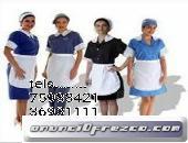 AGENCIA DE PESONAL DOMESTICO DE ENTRADA X SALIDA