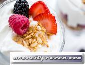Búlgaros de Leche Yogurt Natural Kéfir Delicioso y Tíbicos Hongos Tibetanos