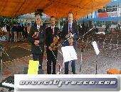 Violinistas para bodas