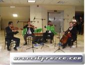 Cuarteto de cuerdas conciertos y eventos de galaCUARTETO DE CUERDAS    Agrupación de cámara profesio