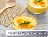 Búlgaros Yogurt Kéfir SCOBY para Kombucha y Tíbicos Hongos Tibetanos