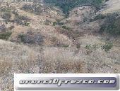 Remato terreno de 4,000 metros al Oriente de Morelia