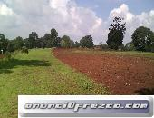 Terreno a pie de carretera 4 hectáreas Villa del Carbón
