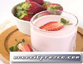 Leche de Búlgaros Kéfir Yogurt Tíbicos y Hongo SCOBY para Té Kombucha
