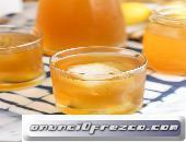 Kombucha Hongo SCOBY Probióticos Búlgaros de Leche y Tíbicos de Agua