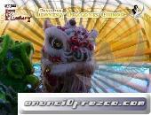 Leones y Dragones Chinos Kashery para eventos y fiestas