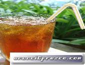 Kombucha Hongo SCOBY Bulgaros de Leche Yogurt Kefir y Tíbicos de Agua