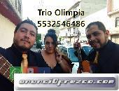 contratar trios romanticos en la ciudad de mexico