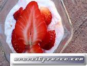 Probióticos Kéfir Búlgaros de Leche Yogurt Tibicos Hongos Tibetanos SCOBY Kombucha