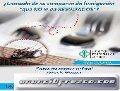 fumigaciones en Puebla
