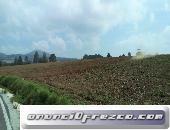 Terreno de 100 hectáreas a 30 minutos del aeropuerto de Toluca excelente para desarrollo de casas