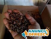 Descascarilladoras De Cacao, para  Nibs, 10 Kg Hora.