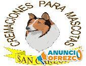 CREMACIONES PARA MASCOTAS TEL 5517302513